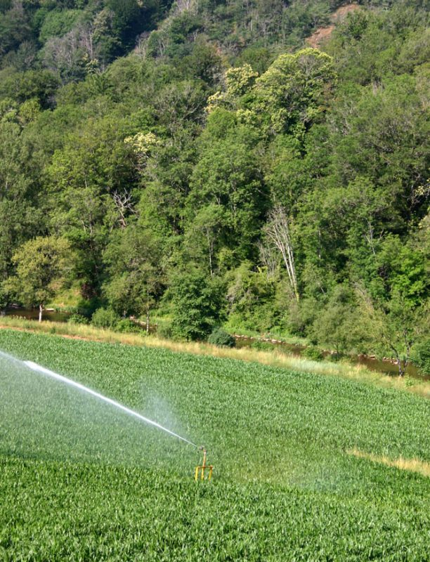 agriculture-hyrigation-segala