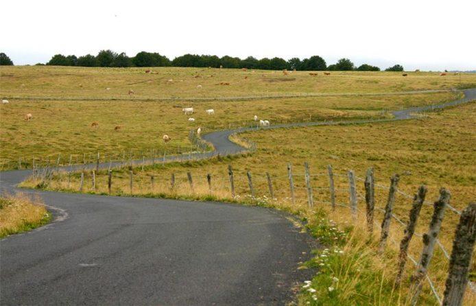 route-plateau-aubrac