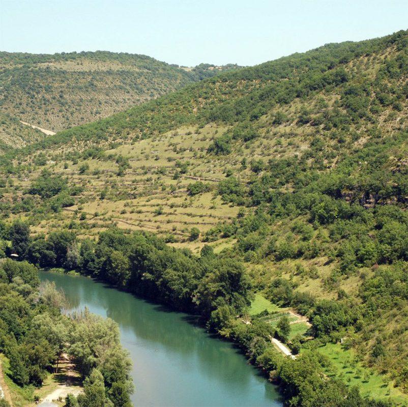saint-rome-de-tarn-auriac-terrasses