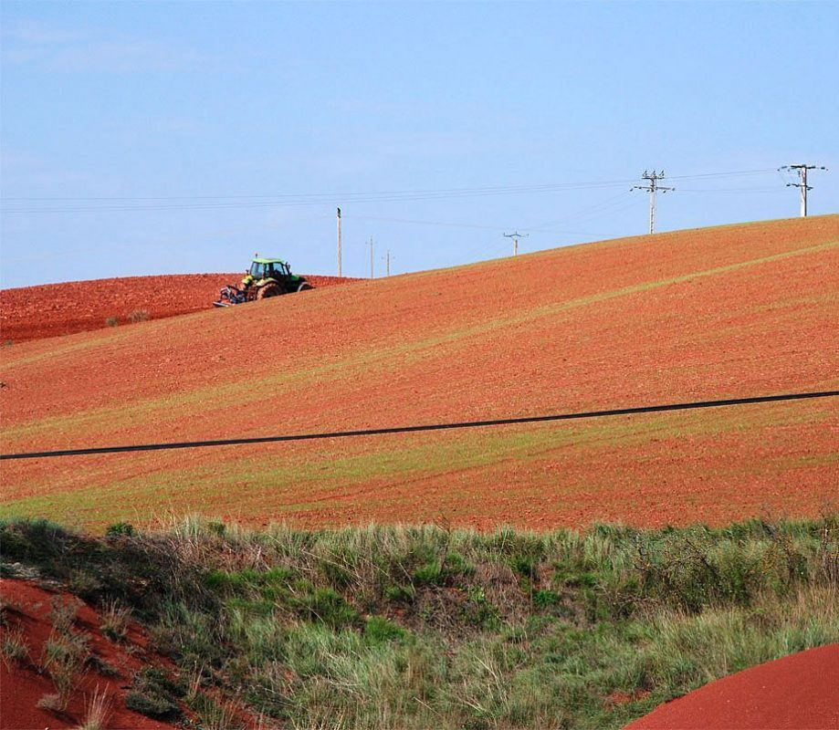agriculture-agressive-rougier-camares