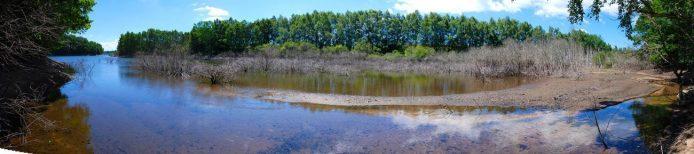 """Les """"queues"""" de lacs créent des paysages sauvages, lieu de reproduction et refuges pour les espèces."""