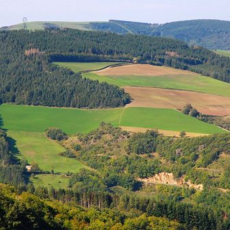 agriculture-foret