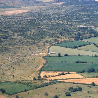 """Les zones les plus fertiles sont cultivées, révélant un paysage structuré par le bocage tandis que les zones caussenardes, """"habitées"""" par les pelouses sèches, sont peu à peu envahies par les genévriers…"""