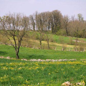 muret-ruine-causse-villefranche