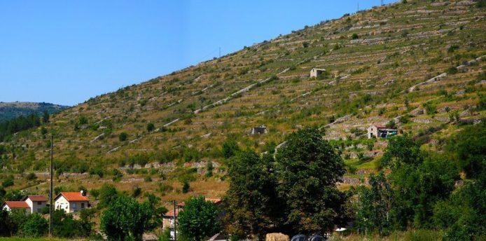 paysage-terrasse-rome-tarn