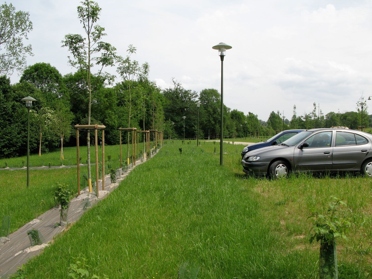 parking-vegetalise-stationnement