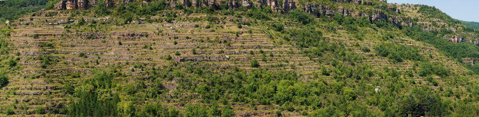 """Entre éboulis et affleurements rocheux des générations d'agriculteurs-maçons se sont efforcés à """"créer de la terre"""" là où il n'y en a pas."""