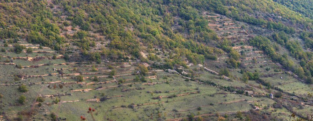 paysage-terrasses-nant